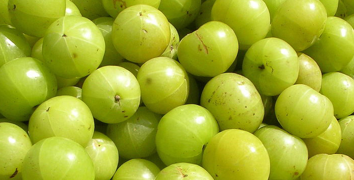 Important health benefits and uses of Amla popularly known as Indian gooseberry