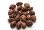 Myrobalan-Medicinal-Benefits